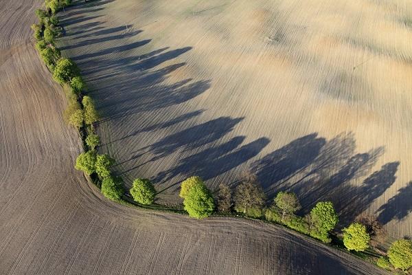 Online Shareholder Access Portal Aerial Image